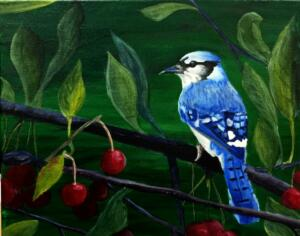 Blue bird on red cherry branches