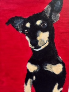 dog with red background1