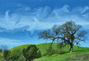 Oak tree on green hills
