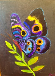 Multi color butterfly