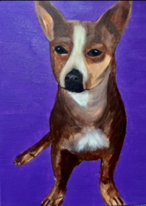 standing dog,  purple background