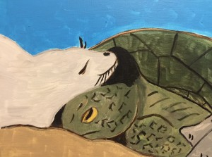 turtle and seal