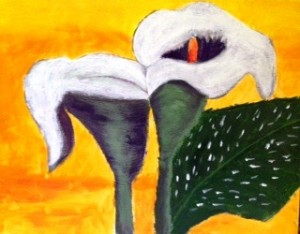 Two white cala lilies, yellow background